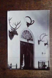 Hunting trophies in the officers' mess of the 14th Bengal Lancers, 1890s